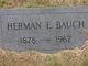 Herman E. Bauch