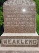Stephen Adreas Weaklend