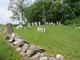 Boshart Cemetery