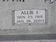 Profile photo:  Allie Irene <I>Heflin</I> Stidham