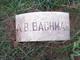 """Profile photo:  Alonzo Brown """"A. B."""" Bachman"""