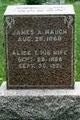 Alice T. Waugh