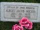 Albert Jacob Michel