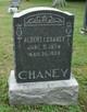 Profile photo:  Albert Chaney