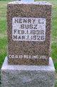 Henry L. Busz