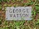 "George Monroe ""Cripple George"" Watson"