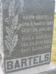 Hilka <I>Stoffers</I> Bartels