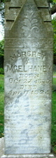 Margaret Ann <I>Jackson</I> McElhaney