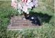 Shirley Elizabeth <I>Buehler</I> Leyes