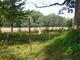 Waterhouse Family Burial Ground