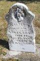 Walter N Ackelson