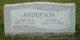 Robert E Anderson