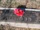 Martha A <I>Lenius</I> Allwood