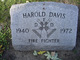 Harold Davis