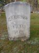 George F. Brown