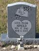 Louis Frank Arnold