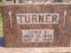Lewis C Turner