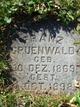 Franz Gruenwald