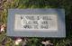 Minnie E. <I>Carlisle</I> Hill