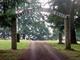 Danish Cemetery