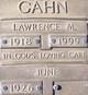 Lawrence M Gahn