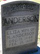 Eliza Ann <I>McDougald</I> Anderson