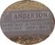 Profile photo:  A. Theadore Anderson