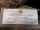 Pvt James Rolla Horn