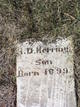 H D Herring