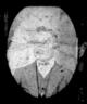 Harry Clifton Dutton