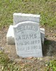 Alban Housley Adams