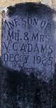 Infant Son of Mr. & Mrs. V.C. Adams