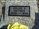 Goldie E Haynes