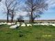 Ramah Full Gospel Church Cemetery