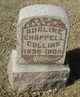 Profile photo:  Adaline <I>Chappell</I> Collins