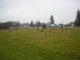 Allport Cemetery