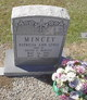 Patricia Ann <I>Lewis</I> Mincey