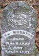 William Newton Brunton