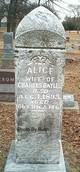 Alice Bayles