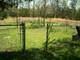 Amick Family Cemetery #03