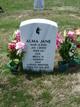 Profile photo:  Alma Jane Warren