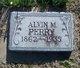 Alvin M. Perry