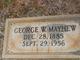 George Washington Mayhew