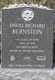 Profile photo: 1LT David Richard Bernstein