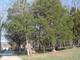 Springer Family Cemetery
