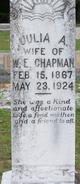 Julia A <I>Metcalf</I> Chapman