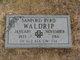 Sanford Byrd Waldrip