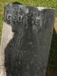 George M Wells
