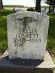 Amelia <I>Leffngwell</I> Lockett