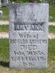 Amy Ann <I>Brooks</I> Andrews